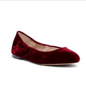 NWT Sam Edelman Cranberry Fritz Velvet Ballet Flat